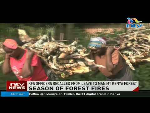 KFS officers recalled from leave to man Mt Kenya Forest