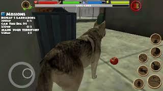 Stray dog simulator #1 -Семейство диких хасок.Симулятор собак.