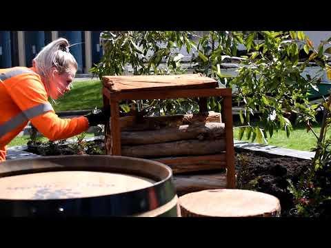 Blooming Tasmania 2018 - City Of Launceston