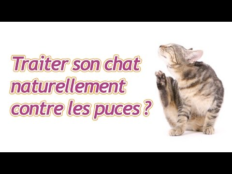 peut on traiter son chat naturellement contre les puces youtube. Black Bedroom Furniture Sets. Home Design Ideas