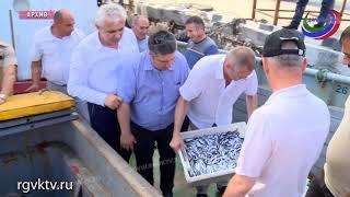 В Дагестане улов рыбы вырос на 30%