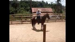 Mauro Leite montando o cavalo Mangalarga Marchador Espartacus da Padania