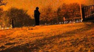 Malayalam Song-oru naran.wmv