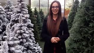 видео искусственные елки