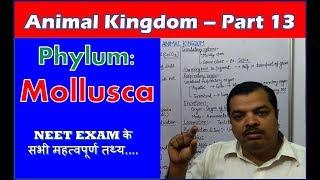 Phylum Mollusca Characteristics | Animal Kingdom | NEET Bio | Part 13
