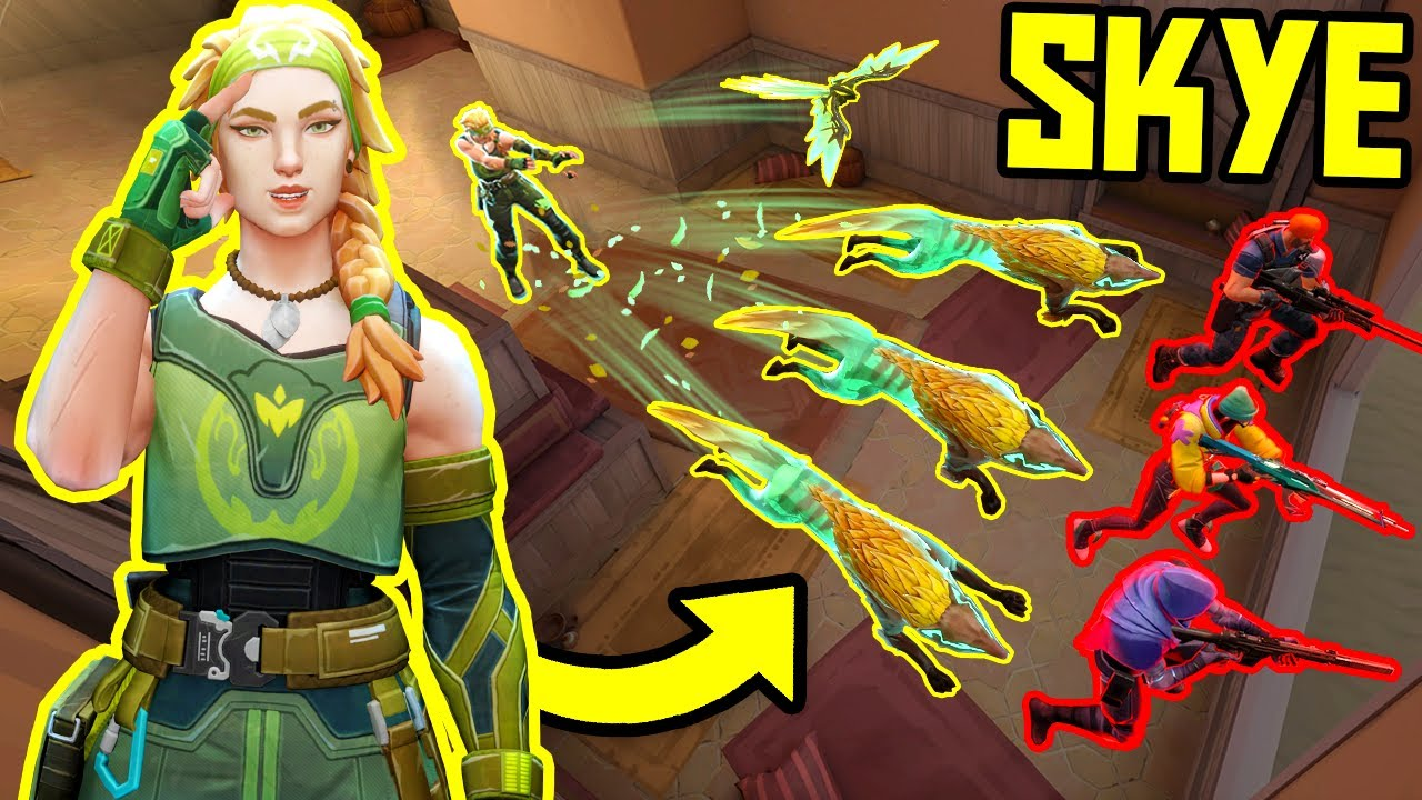 Download THE POWER OF SKYE - Best Tricks & 200 IQ Plays - VALORANT
