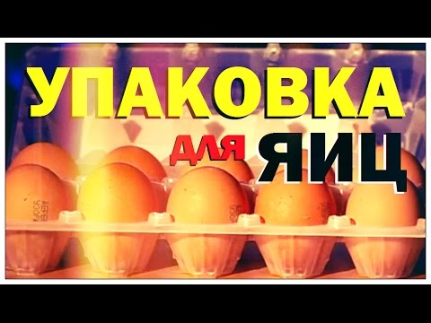 Галилео. Упаковка для яиц