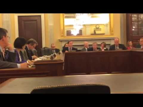 Senate Veterans Committee Clay Hunt Bill