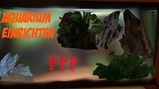 Aquarium Einrichten - 54 Liter Becken Gestalten | Aquascape Aquarium - Aquascaping