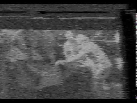 viewing a vhs tape on a computer using sdr
