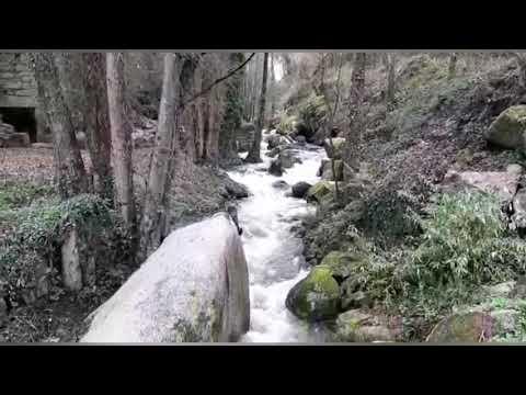 O río Fervedoira, tras as últimas chuvias