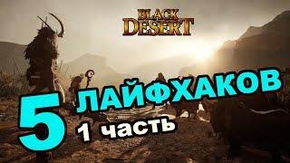 Black Desert (MMORPG ИГРЫ)  Лайфхаки, секреты, фишки в BDO