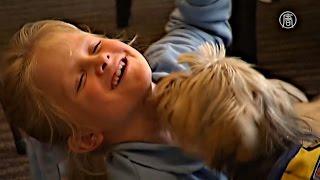Девочки с диабетом учатся вместе со своей собакой-помощником (новости)