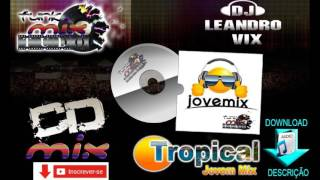 CD Funk do Tropical Jovem Mix 2015 As melhores Vol 09 ( Dj Leandro vix )