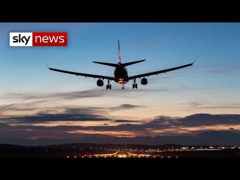 Stowaway falls from plane in London