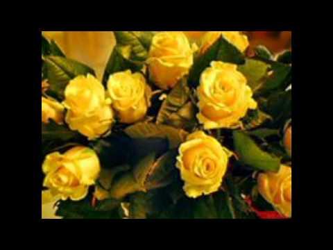 цветы желтого цвета и сочетание цветов желтый для букетов