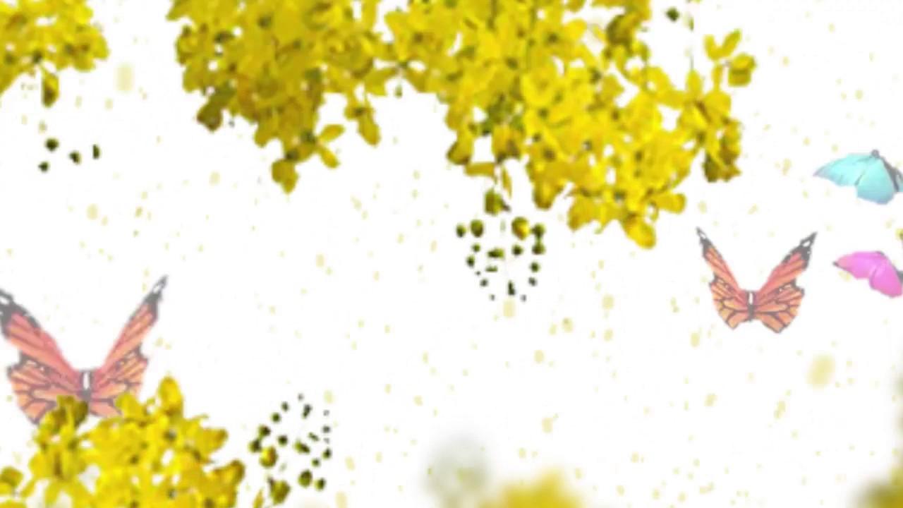 Download Vishu celebration animation video (വിഷു ആശംസകൾ)