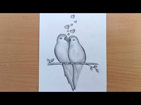 how-to-draw-two-parrots-in-love-//two-parrots-in-love-by-pencil-sketch