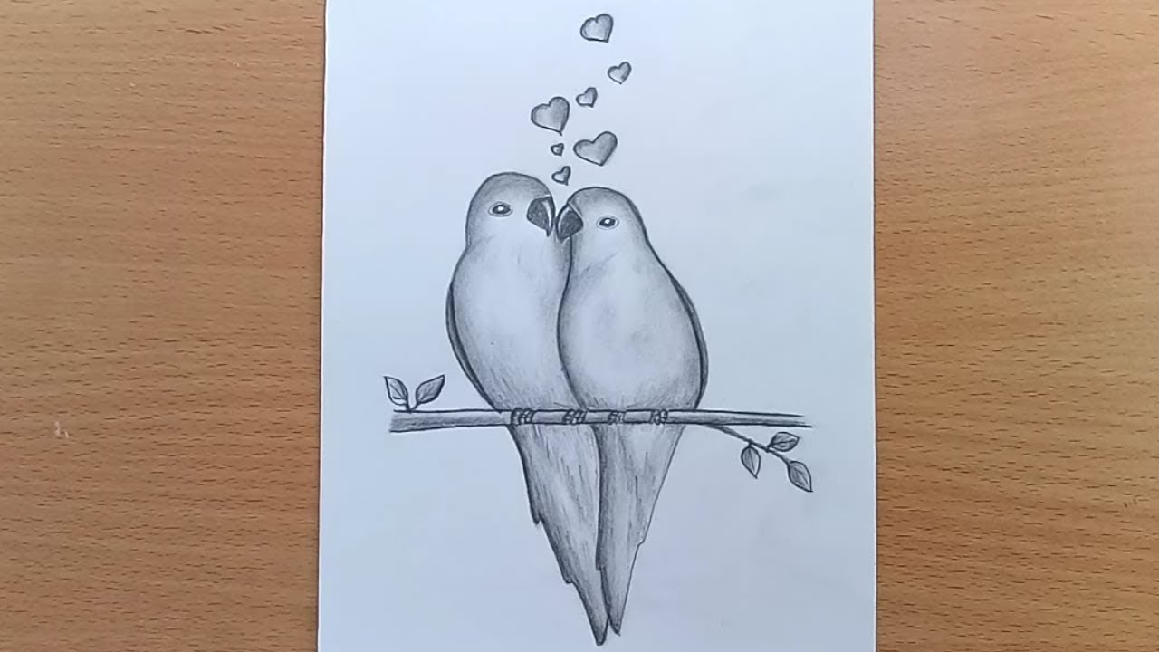How To Draw Two Parrots In Love Two Parrots In Love By Pencil Sketch Youtube
