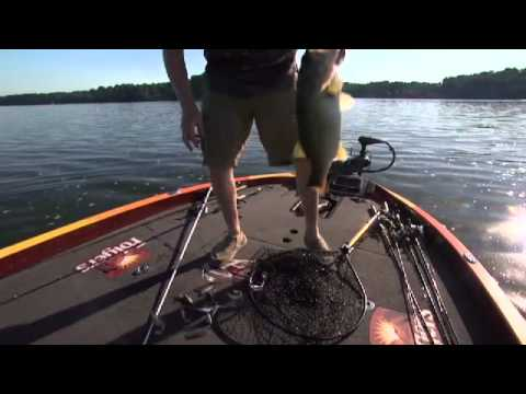Preview 'FLW' - 2013 Walmart FLW Tour - Lake Chickamauga