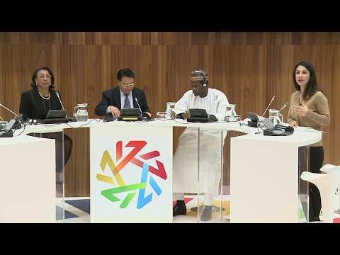 UNIDO GC 17: IDDA3 - Helping Africa leapfrog its industrial development