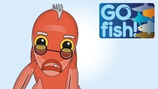Hank The Orange Roughy Has Something To Tell You... Go Fish!
