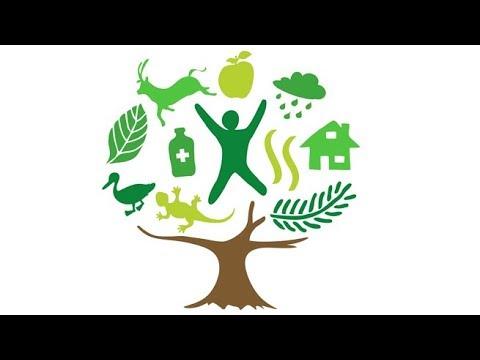 Sosyal Sorumluluk Projesi - YouTube