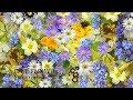 МУЗЫКА ДЛЯ МЕДИТАЦИИ и РЕЛАКСАЦИИ САМАЯ КРАСИВАЯ 01 07 MUSIC BY SRI CHINMOY MEDITATION mp3
