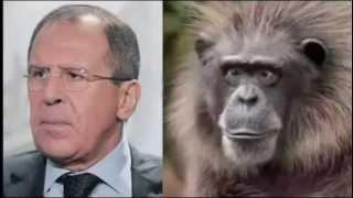 СМОТРЕТЬ ВСЕМ! Юмор  Забавные сходства  Политики России  Прикольные фото  Смешное видео