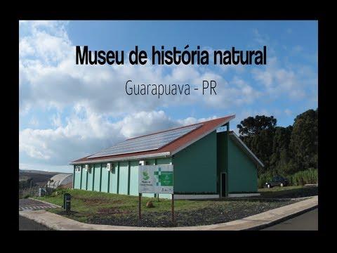 Museu de História Natural de Guarapuava