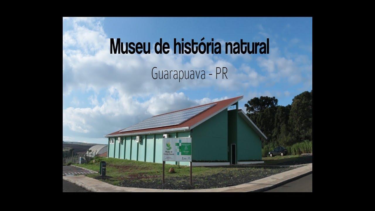 e9ce8158e0511 Documentário Museu de História Natural de Guarapuava - YouTube