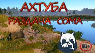 Русская Рыбалка 4 Ахтуба Раздача сома