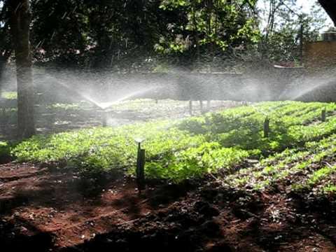 sistema de irriga o plantagua com equipamentos de automa o rain bird youtube. Black Bedroom Furniture Sets. Home Design Ideas