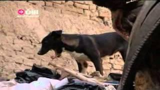 الفقر والفساد هواجس الشعب المصري