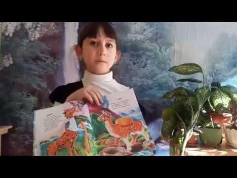 Изображение предпросмотра прочтения – КамиллаМодебадзе читает отрывок изпроизведения «Что ни страница, — то слон, то львица» В.В.Маяковского