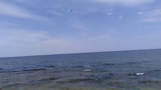 #1 Мальдивы в Дагестане, июль 2018 | Пляж у базы отдыха Терек | Каспийское море