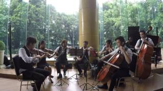 The Manila String Machine Cover of Ants Marching by Dave Matthews Band