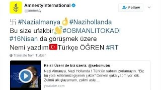 Кибер хулиганы в поддержку Эрдогана
