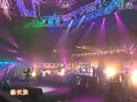 wang-feng-chun-tian-li-successrobi