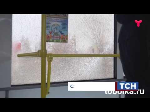 В Тобольске стреляли в автобус?