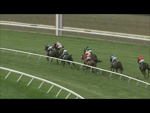 video thumbnail for MONMOUTH PARK 10-21-20 RACE 3