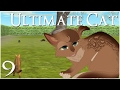 A Rat Invasion & Deadly Dog Fight!! • Ultimate Cat Simulator - Episode #9