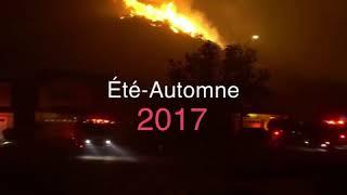 Ouragans, incendies... 2017, année la plus coûteuse pour les États-Unis