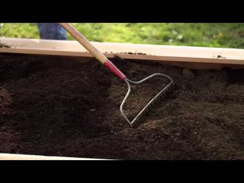 Raised bed garden soil preparation