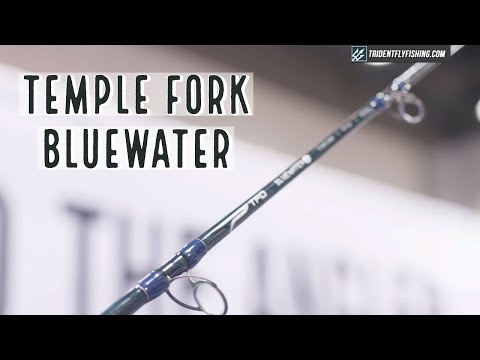 TFO Bluewater SG Fly Rod | Insider Review