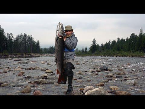 рыбалка в забайкалье на тайменя