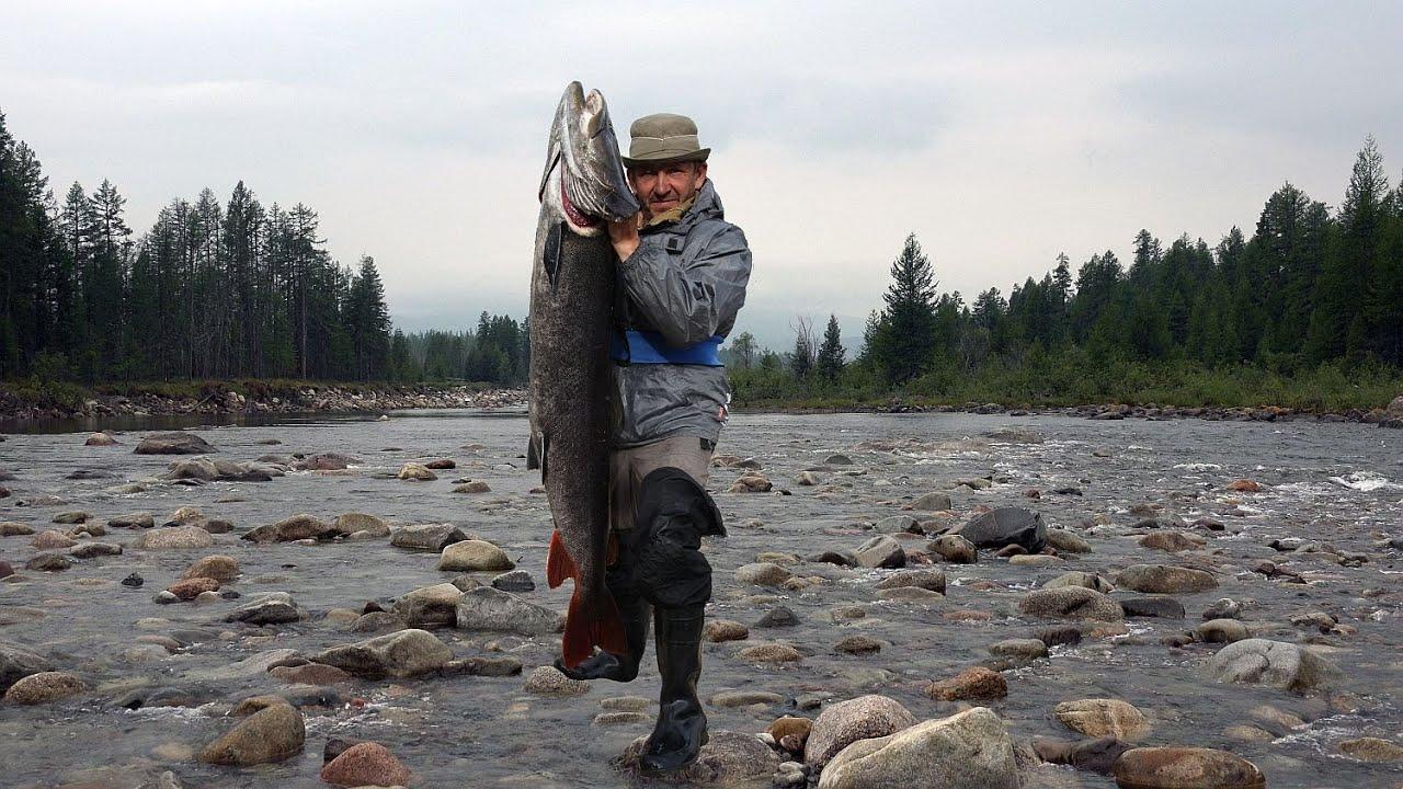 Видео рыбалка на ононе