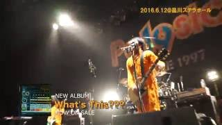 POLYSICS YouTube BLOG 0612 in 品川ステラボール