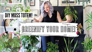 how to care for indoor plants + greenify you home! | DIY, tips and tricks
