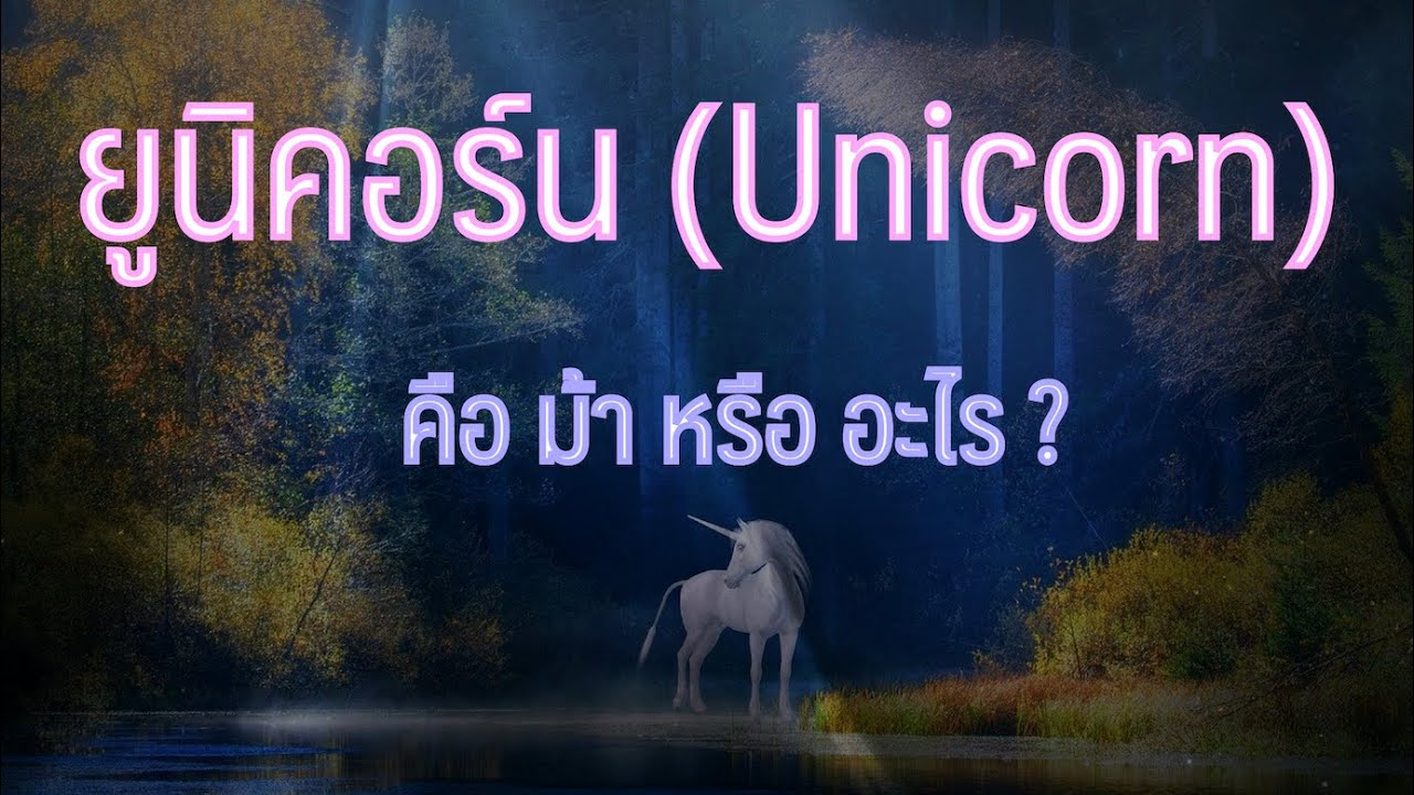 ยูนิคอร์น คือ ม้า หรือ อะไร ?